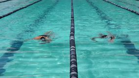男性和女运动员严谨地在以后的游泳竞争的自由式训练 影视素材