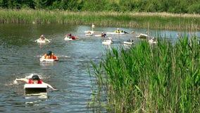 男性和女运动员在水上运动挑战的泡沫板漂浮 影视素材