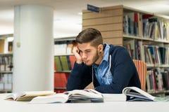 男性大学生在图书馆里 库存图片