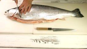 男性手切开了大鱼 影视素材