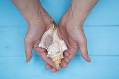 男性手指拿着在蓝色背景的一个贝壳 免版税图库摄影