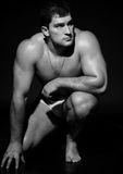 男性模型肌肉 免版税库存照片