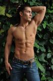 男性模型自热带温室 免版税库存图片