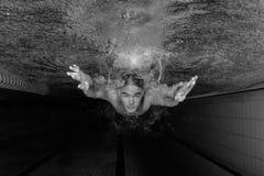 男性游泳者 免版税图库摄影