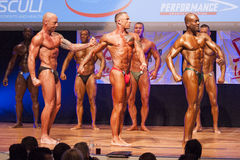 男性爱好健美者显示力量并且显示他们的最佳的physiqu 图库摄影
