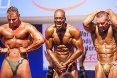 男性爱好健美者显示力量并且显示他们的最佳的physiqu 免版税图库摄影