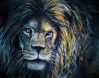 男性狮子画象柔和的淡色彩和木炭艺术 免版税库存照片