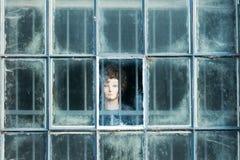男性玩偶面孔在窗口里 免版税库存图片