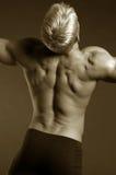 男性肌肉 免版税库存照片