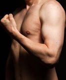 男性肌肉 免版税库存图片