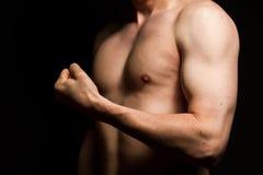 男性肌肉 图库摄影