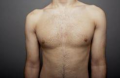 男性胸腔 免版税库存图片