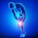 男性膝盖痛苦 库存照片
