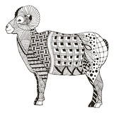 男性落矶山脉大角野绵羊公羊常设zentangle传统化 免版税库存图片