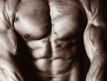 男性身体 免版税库存照片