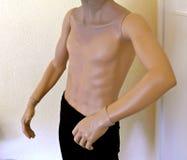 男性躯干,时装模特,半赤裸无首,佩带黑长裤 免版税库存照片