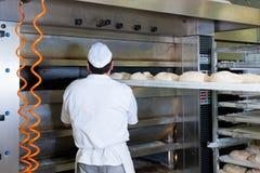 男性面包师烘烤面包 免版税库存照片