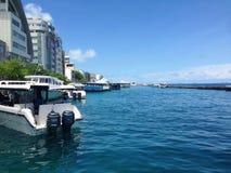 男性,马尔代夫 免版税库存照片