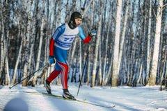 年轻男性滑雪者经典样式在足迹的一个冬天桦树森林里 免版税库存图片
