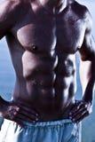 男性muscule肉欲的躯干 库存图片