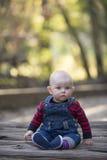男婴在一发光的秋天天 图库摄影
