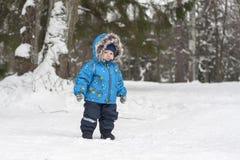 男婴在冬天漫步在杉树中的雪森林里 男孩w 免版税库存照片
