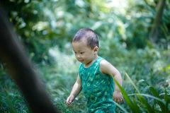 男婴在夏天 图库摄影