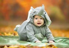 男婴在大象服装穿戴了在公园 免版税库存照片