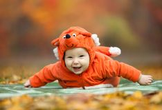 男婴在狐狸服装穿戴了在秋天公园 免版税库存图片