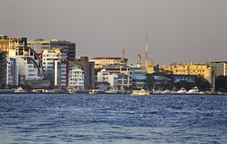 男 马尔代夫共和国 库存图片