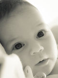 男婴 免版税库存照片