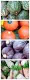 画笔干燥新鲜蔬菜 免版税图库摄影