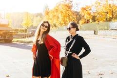 画象两美丽的愉快的女朋友在公园 库存照片