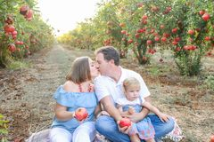 画象亲吻做父母与女婴女儿获得休息和乐趣在日落的pomegrate果子庭院 愉快的系列 库存照片