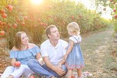 画象微笑做父母与女婴女儿获得休息和乐趣在日落的pomegrate果子庭院 愉快的系列 免版税库存图片