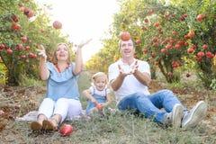 画象愉快微笑和laughting做父母与逗人喜爱的小女儿获得乐趣在pomegrate果子庭院 收获,家庭 库存图片