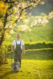 画象老人从事园艺 免版税库存照片