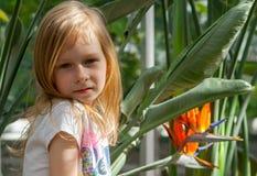画象,小女孩七年,坐下棵鹤望兰 库存照片