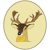画象 一头鹿的头在一个圆的框架的,在白色的动画片 库存照片