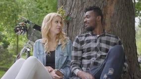画象confidient俏丽的白肤金发的妇女和英俊的非裔美国人的人谈的开会在一棵老树下在公园 影视素材