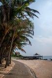 界限海岛陵水椰子足迹 库存图片