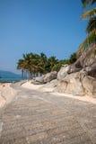 界限海岛陵水椰子足迹 库存照片