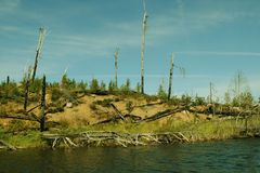 从界限水的场面 免版税库存图片