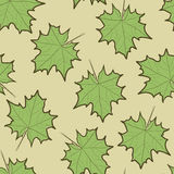 留下槭树模式 免版税图库摄影