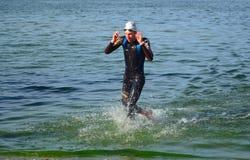 留下水的主导的竞争者在游泳结束时 免版税库存照片