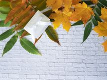 留下秋天白色砖墙 免版税库存图片