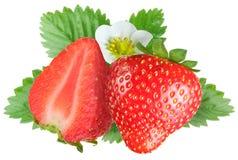 留下诱惑的草莓 免版税库存图片