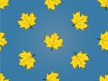 留给槭树模式无缝 免版税库存照片