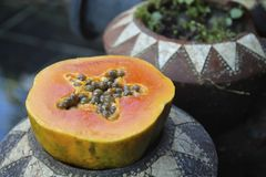 番木瓜用在花盆的种子切成了两半 图库摄影
