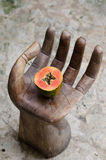 番木瓜,手,切片,热带水果,海,沙子 免版税库存照片